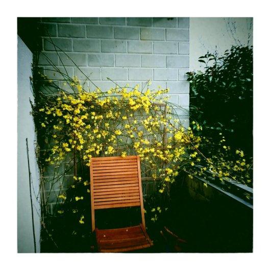 The colder the temperature, the more vivid the yellow color.